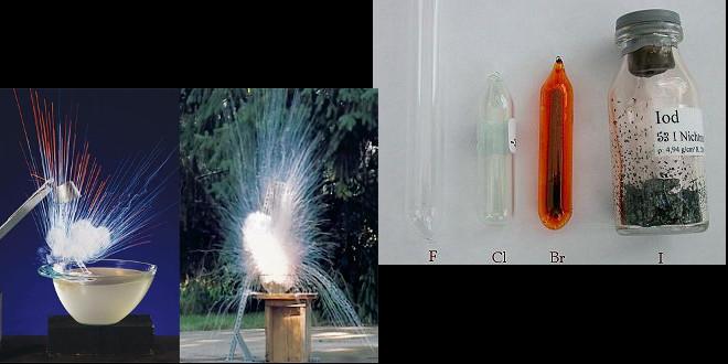 میهمانی فلزات قلیایی و هالوژن ها